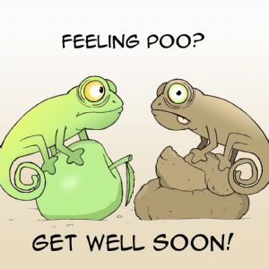 TW403  Funny Get Well Soon Card